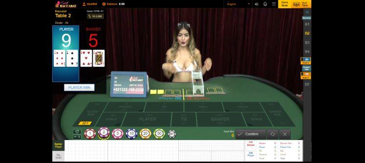 Tampilan meja live casino sexy baccarat White Label